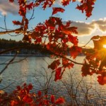 Best Fall Vacations to Enjoy the Season