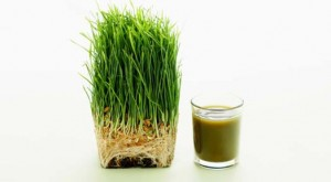 Health Benefits of Green Supplements