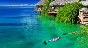 Summer Snorkeling Vacations