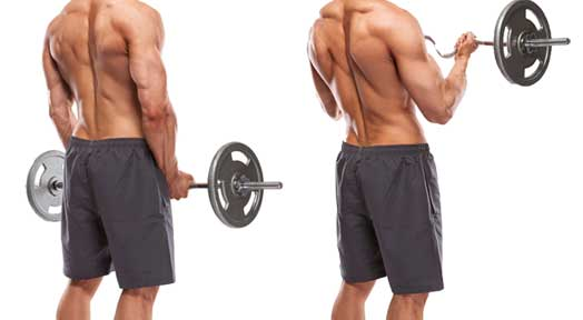 Customize Your Sets and Reps for Max Muscle Gain