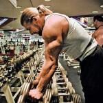 The Triple H Workout Plan