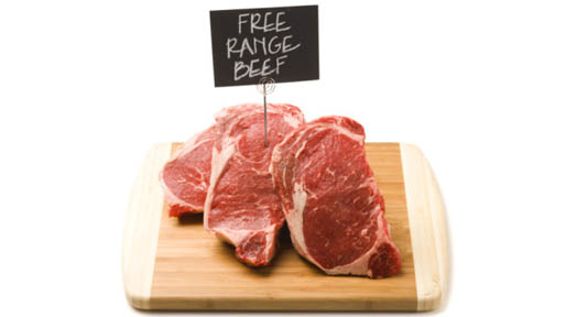 What's the Big Deal About Grass Fed Beef?